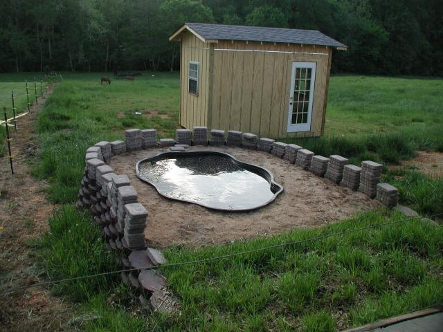 Poultry duck housing and feeding animal husbandry home for How to build a duck shelter