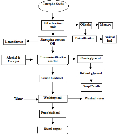 tnau agritech portal bio fuels rh agritech tnau ac in PID Biodiesel Production Manufacturing Process Flow Diagram