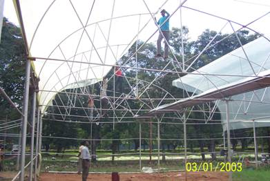 Horticulture Greenhouse Cultivation