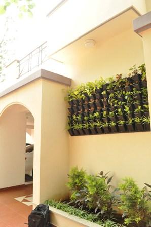 Horticulture :: Landscaping :: Vertical Gardening