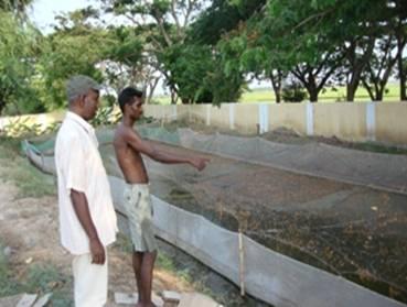 Schemes Services Krishi Vigyan Kendra Kvk